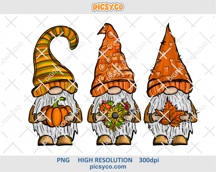 Fall gnomes png, hand drawn digital download file for sublimation print